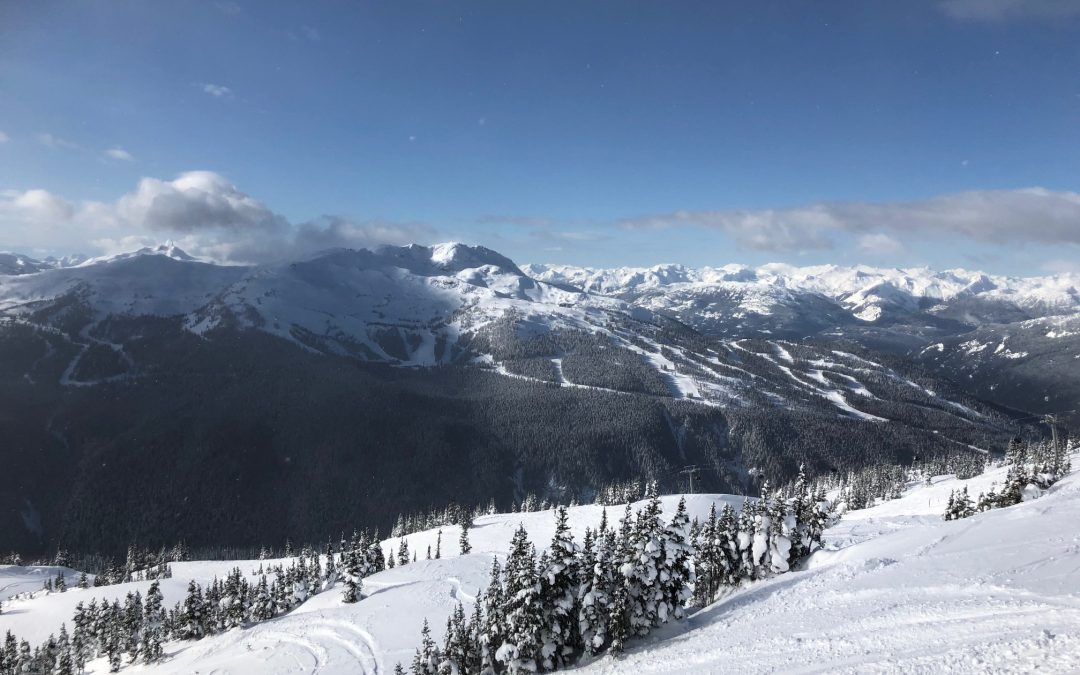 2020 Foresight for the Whistler Ski Season